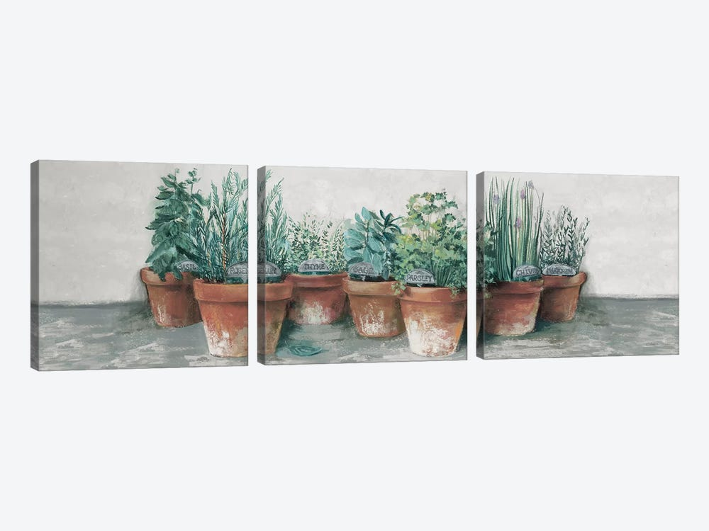 Pots of Herbs II Cottage v2 by Carol Rowan 3-piece Canvas Art