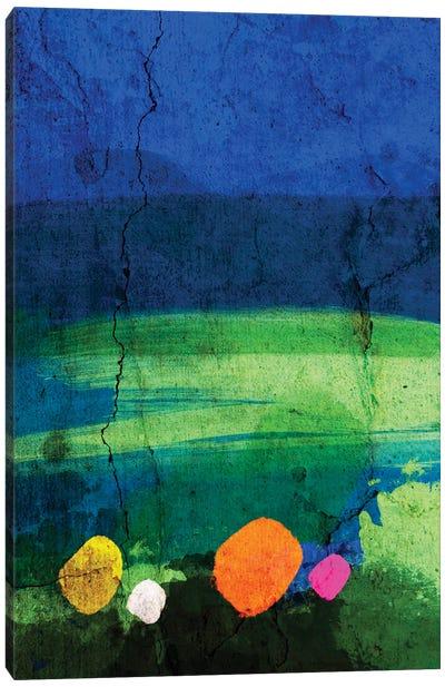 A Walk In The Meadow Canvas Art Print