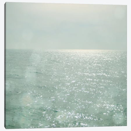 The Silver Sea Canvas Print #CSB142} by Cassia Beck Canvas Print