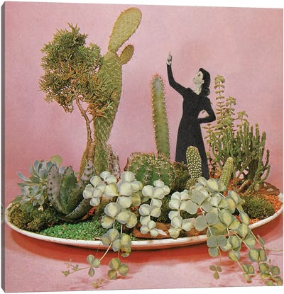 The Wonders of Cactus Island Canvas Art Print