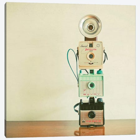 Tower of Cameras Canvas Print #CSB144} by Cassia Beck Canvas Art