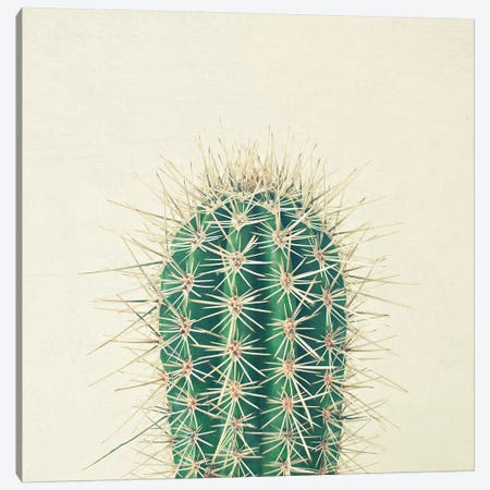 Cactus Canvas Print #CSB22} by Cassia Beck Canvas Wall Art