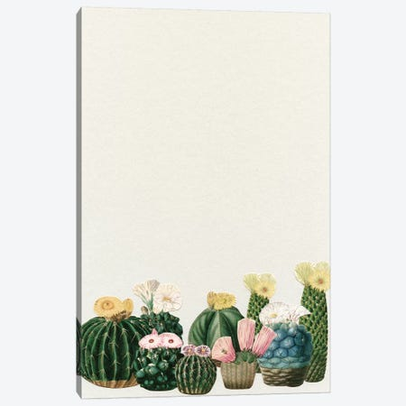 Cactus Garden (Collage) Canvas Print #CSB24} by Cassia Beck Canvas Art Print