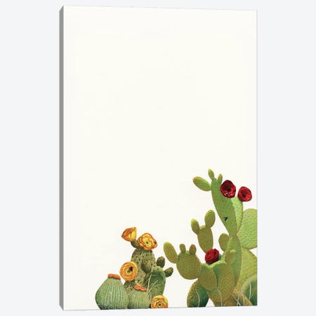Cactus Garden II (Collage) 3-Piece Canvas #CSB25} by Cassia Beck Art Print