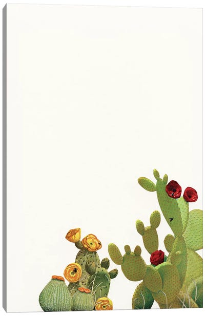 Cactus Garden II (Collage) Canvas Art Print