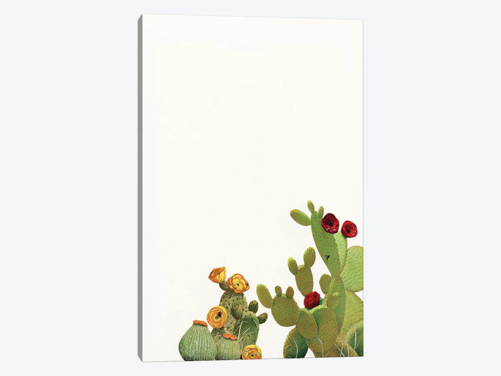 Cactus Garden II (Collage) by Cassia Beck 1-piece Canvas Art Print