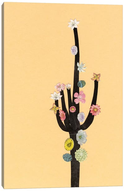 Flowering Cactus Canvas Art Print