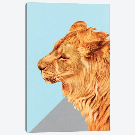 Lion Portrait Canvas Print #CSB68} by Cassia Beck Canvas Art