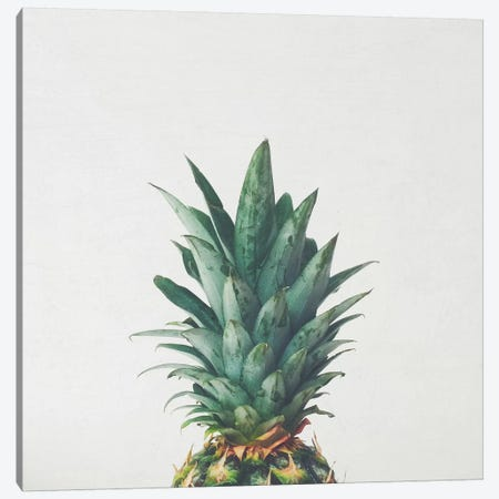 Pineapple Top Canvas Print #CSB89} by Cassia Beck Canvas Wall Art