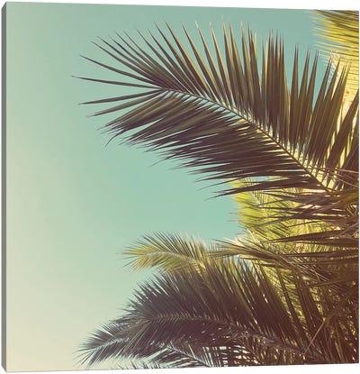 Autumn Palms Canvas Art Print