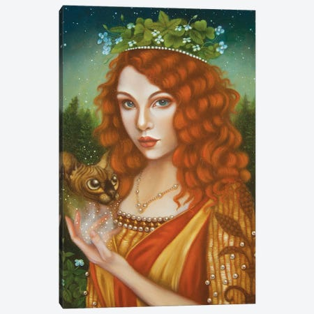 Ombrose Notti Canvas Print #CSE15} by Carla Secco Canvas Print
