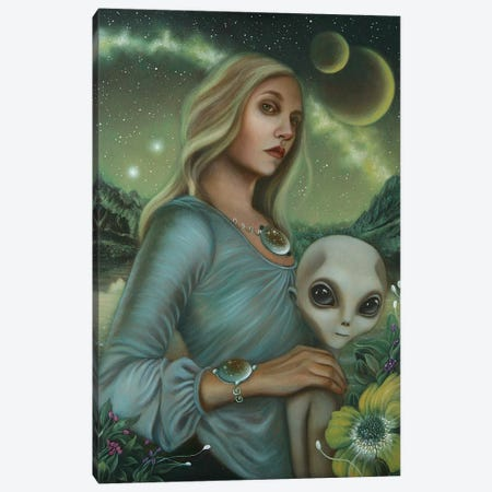 Universal Nights Canvas Print #CSE22} by Carla Secco Canvas Art Print