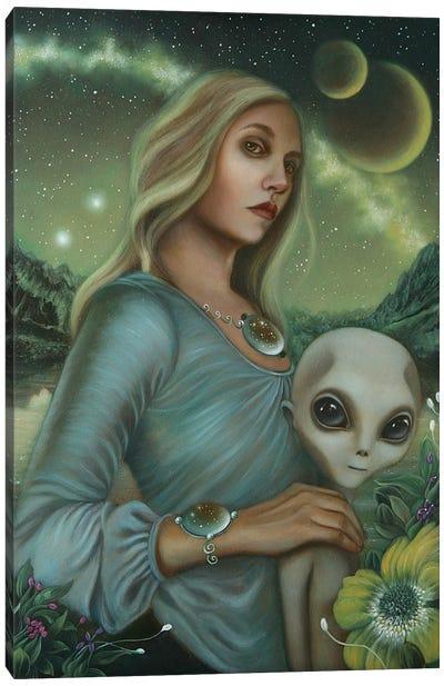 Universal Nights Canvas Art Print