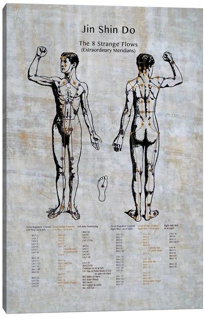 Jin Shin Do: The 8 Strange Flows Meridian Chart Canvas Art Print