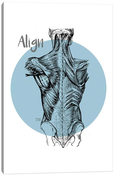 Muscles Of The Back Align Canvas Art Print