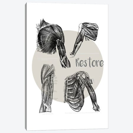 Muscles Of The Chest And Shoulder Restore Canvas Print #CSM35} by ChartSmartDecor Canvas Art Print