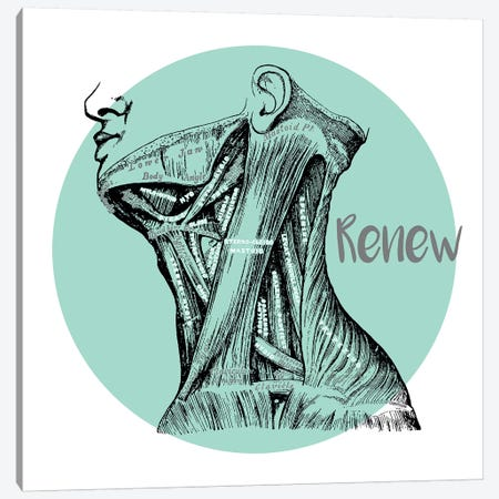 Muscles Of The Neck Renew Canvas Print #CSM45} by ChartSmartDecor Canvas Wall Art