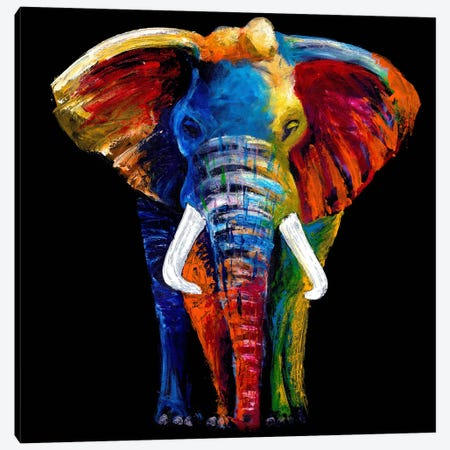 The Great Elephant Canvas Print #CSU2} by Clara Summer Canvas Art