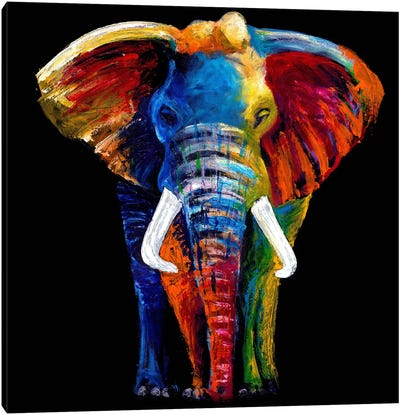 The Great Elephant Canvas Art Print