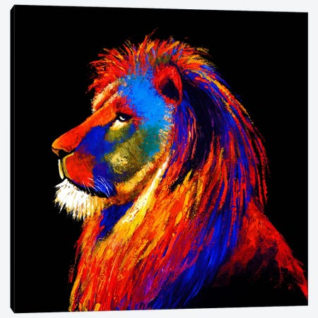 The Lion Canvas Print #CSU3} by Clara Summer Canvas Art