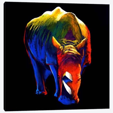 The Rhino Canvas Print #CSU4} by Clara Summer Canvas Art Print