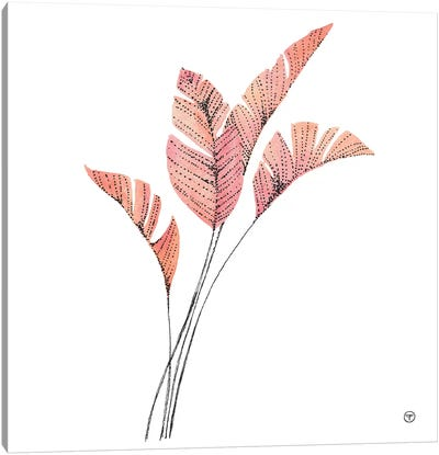 Feather Fronds Canvas Art Print
