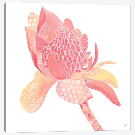 King Protea Paper Canvas Print #CTA40} by CreatingTaryn Canvas Art