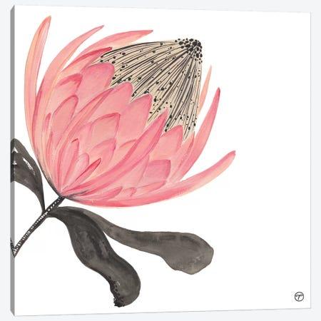 Protea Stripes Canvas Print #CTA58} by CreatingTaryn Art Print