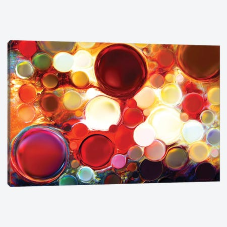 Dragon's Blood Canvas Print #CTB10} by Christopher Brown Canvas Art