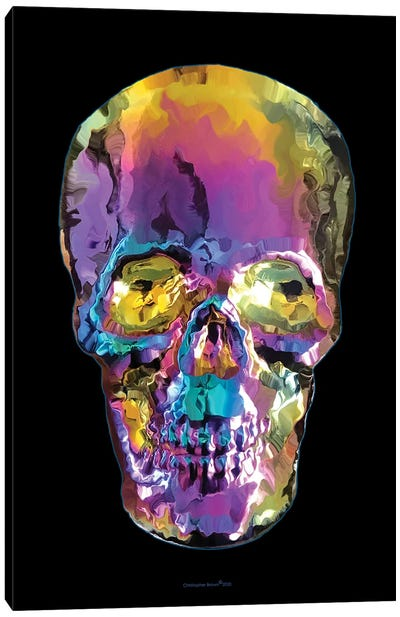 Liquid Skull Canvas Art Print