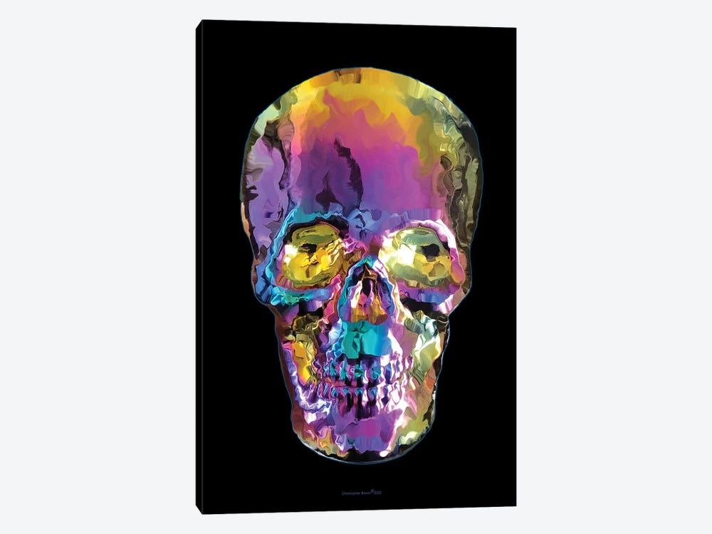 Liquid Skull by Christopher Brown 1-piece Canvas Wall Art