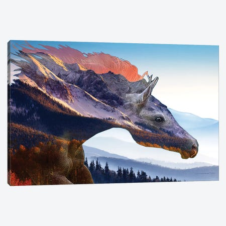 Mountain Wind Canvas Print #CTB23} by Christopher Brown Art Print