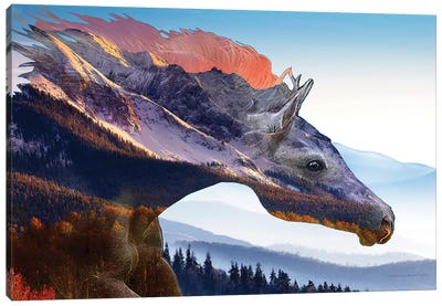 Mountain Wind Canvas Art Print