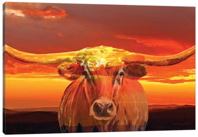 Texas Sunset Canvas Art Print