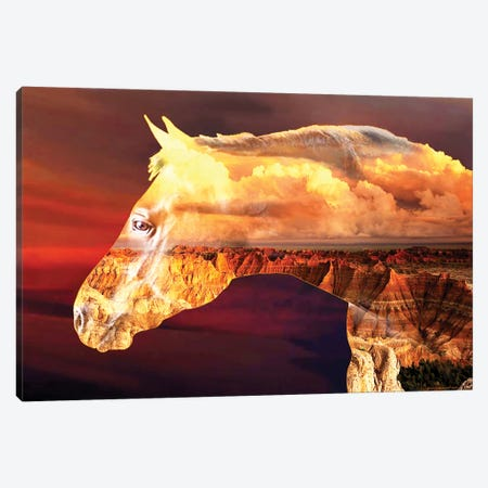 Cloud Horse Canvas Print #CTB7} by Christopher Brown Canvas Art