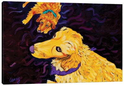 The Look Canvas Art Print