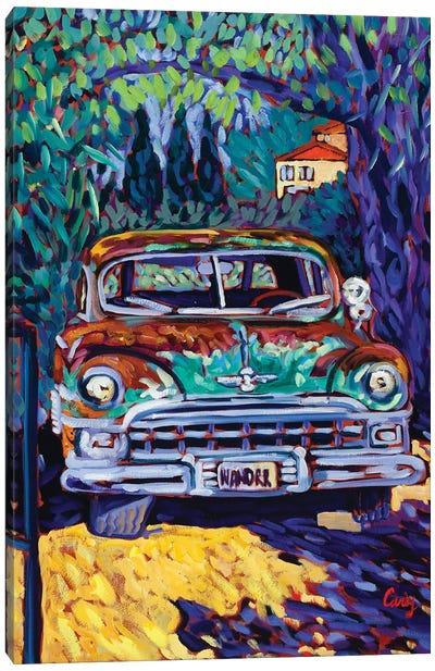 Wanderer Canvas Art Print