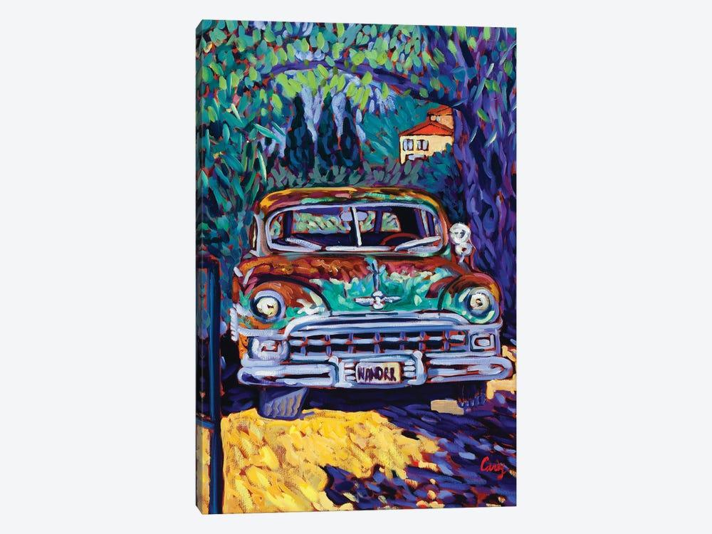 Wanderer by Cathy Carey 1-piece Canvas Art Print