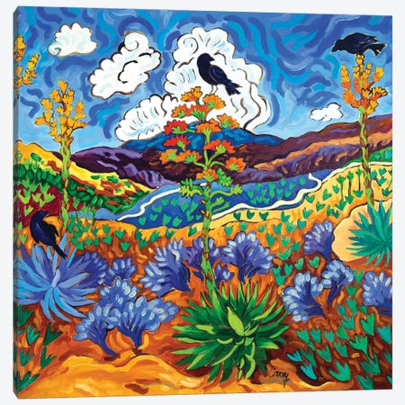 Canyon Consultation Canvas Print #CTC24} by Cathy Carey Art Print