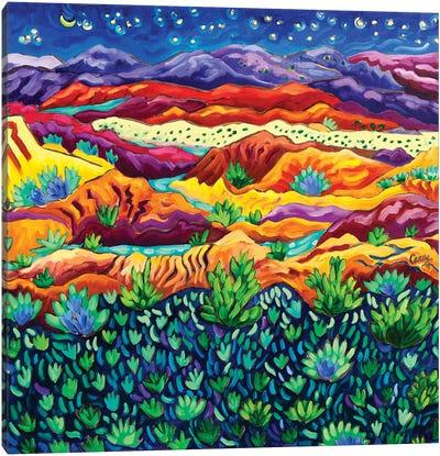 Patterns of Night Canvas Art Print