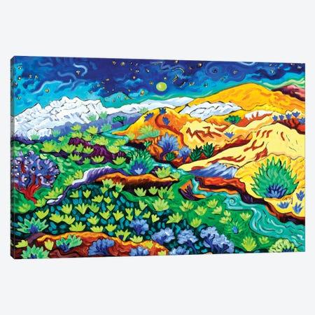 Western Starlight Canvas Print #CTC35} by Cathy Carey Canvas Artwork