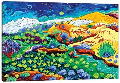 Western Starlight Canvas Art Print