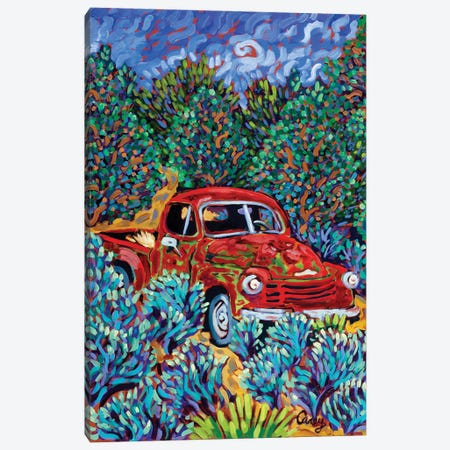 Little Red Truck Canvas Print #CTC6} by Cathy Carey Canvas Print