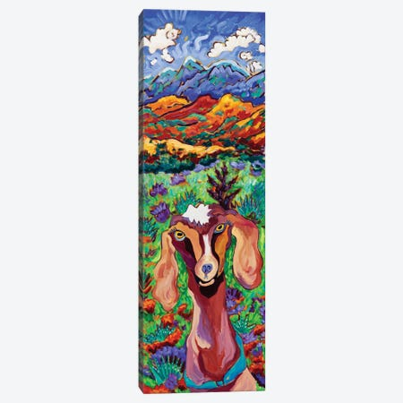 Mountain High Goat Canvas Print #CTC9} by Cathy Carey Canvas Art