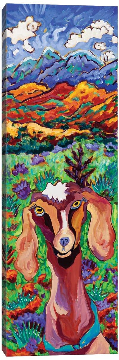 Mountain High Goat Canvas Art Print