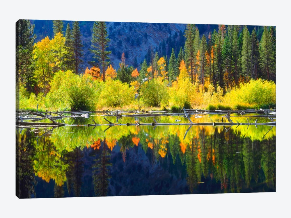 Vibrant Mountain Landscape And Its Reflection, Sierra Nevada, California, USA by Christopher Talbot Frank 1-piece Art Print