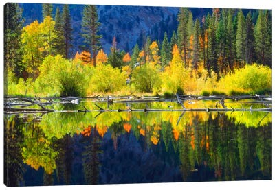 Vibrant Mountain Landscape And Its Reflection, Sierra Nevada, California, USA Canvas Art Print