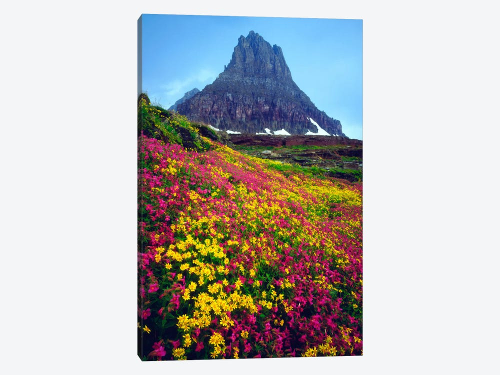 Summer Landscape, Glacier National Park, Montana, USA by Christopher Talbot Frank 1-piece Canvas Art Print