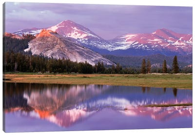 Lembert Dome And Its Reflection In The Tuolumne River, Yosemite National Park, California, USA Canvas Art Print