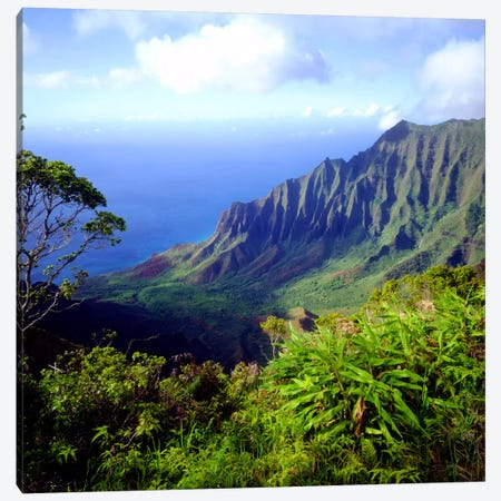 Overview Of The Kalalau Valley, Na Pali Coast State Park, Kaua'i, Hawai'i, USA Canvas Print #CTF4} by Christopher Talbot Frank Canvas Wall Art